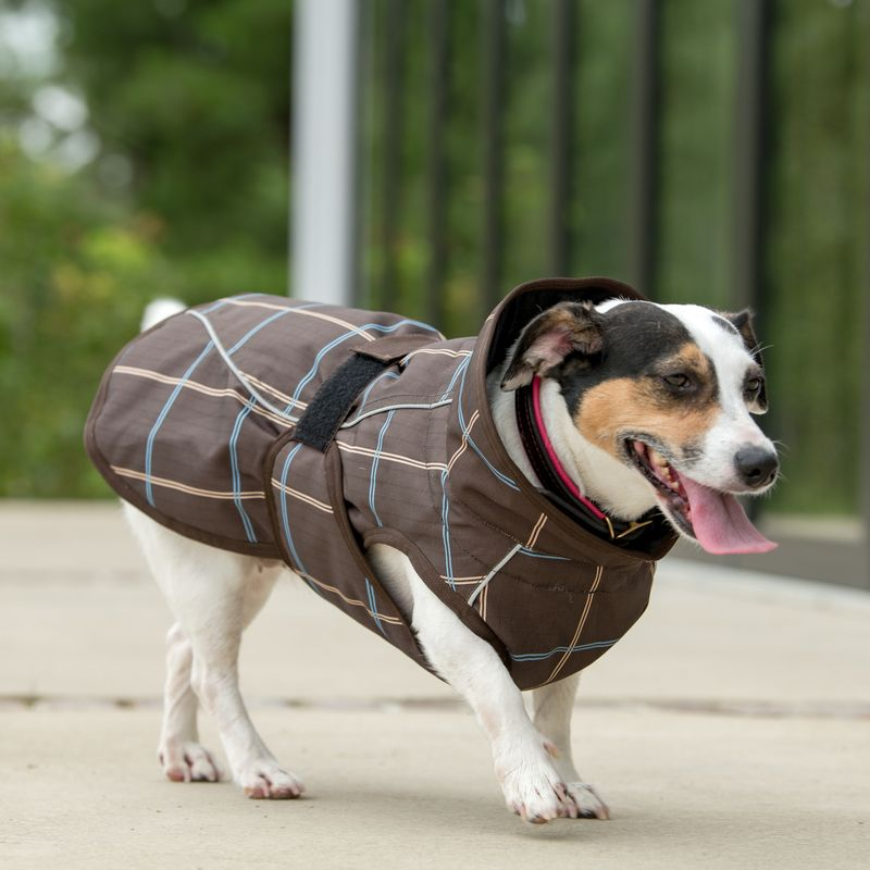 OPEN-BOX--Dog-Coat---Mocha-Tan-Plaid-Large