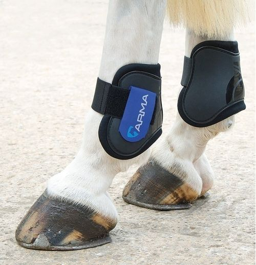 OPEN BOX: Fetlock Boots - Black/Royal Blue-Pony/Cob