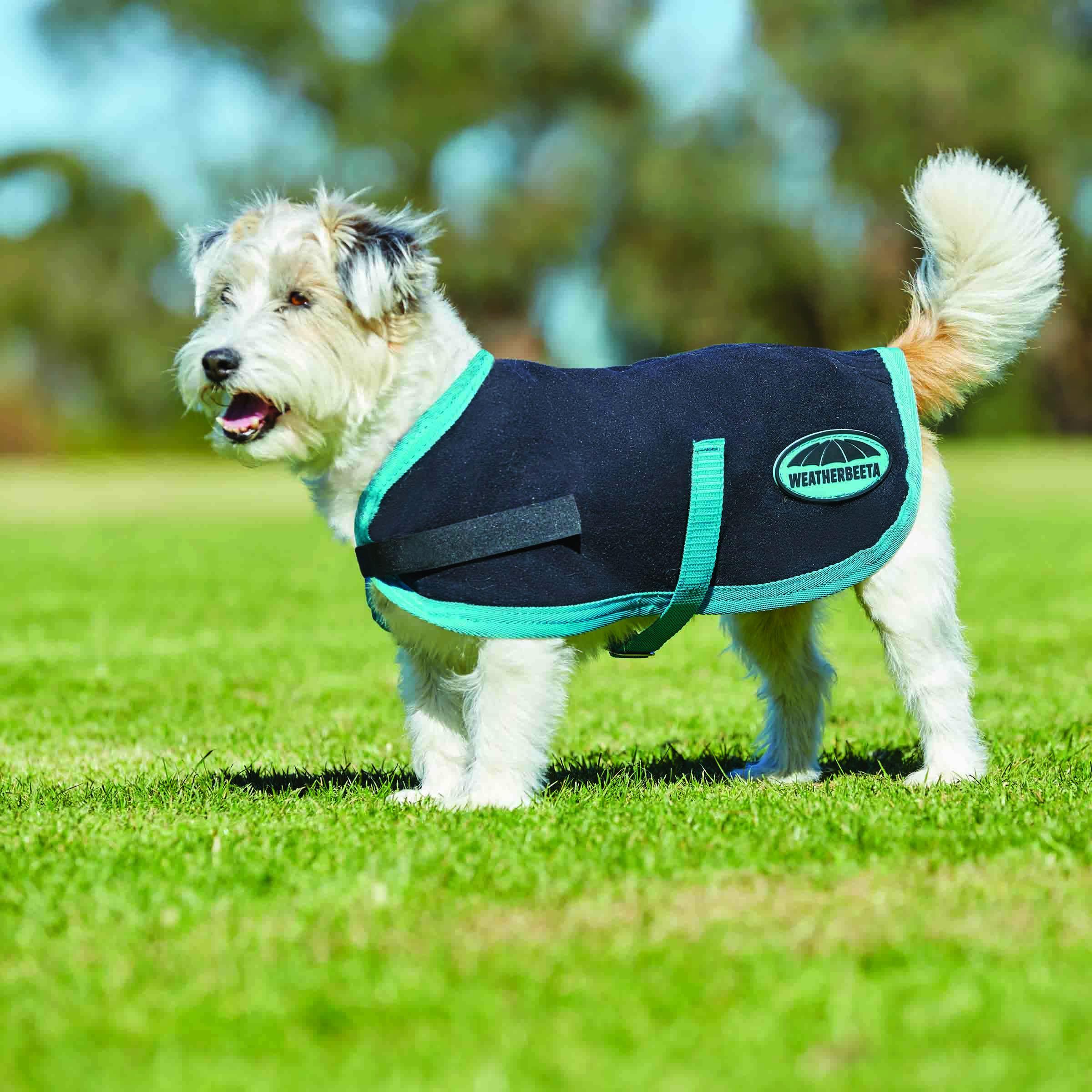 Weatherbeeta ComFiTec Classic Parka Dog Coat