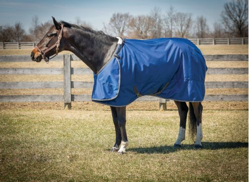 Hug 2520D Super Heavy Weight Turnout Blanket - Cobalt/Grey