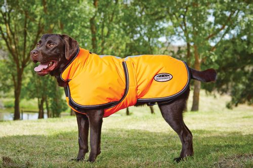 Weatherbeeta Reflective Parka 300D Deluxe Lite Dog Coat - Orange