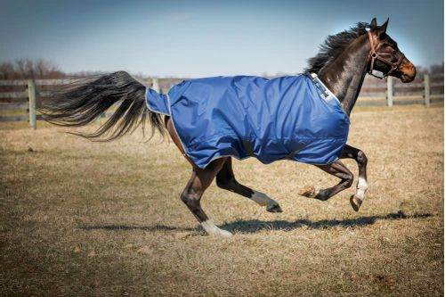 Hug 2520D Super Medium Weight Turnout Blanket - Cobalt/Grey