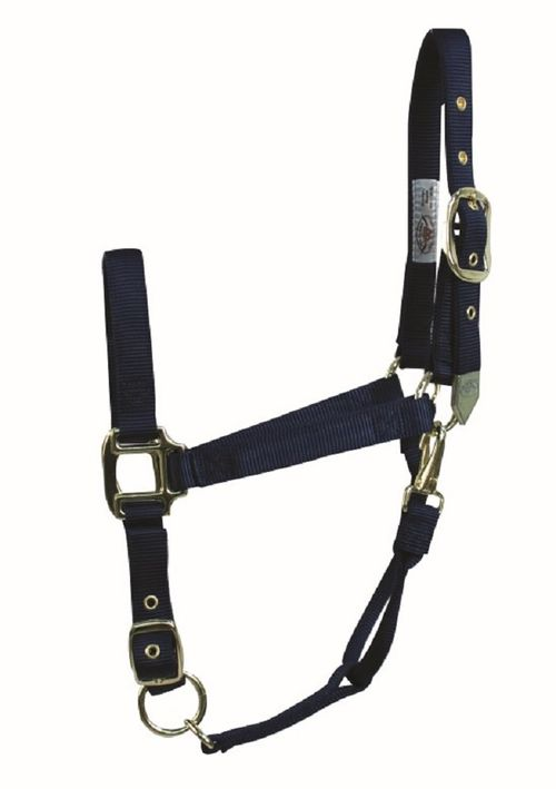 Western Rawhide Signature Classic Halter w/Snap - Navy