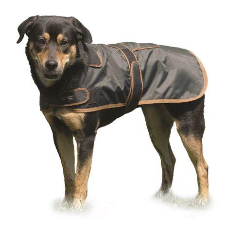 Western Rawhide Century Tiger Deluxe 420D Dog Coat - Khaki