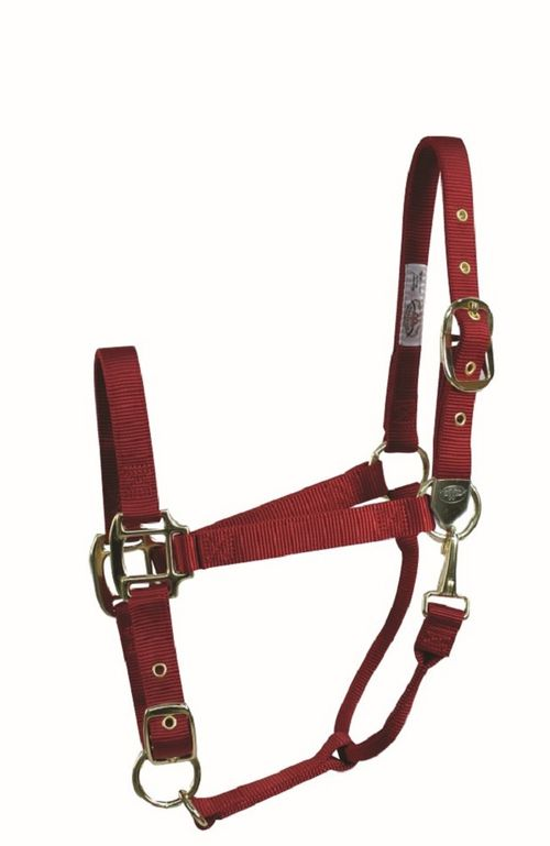 Western Rawhide Signature Classic Halter w/Snap - Red