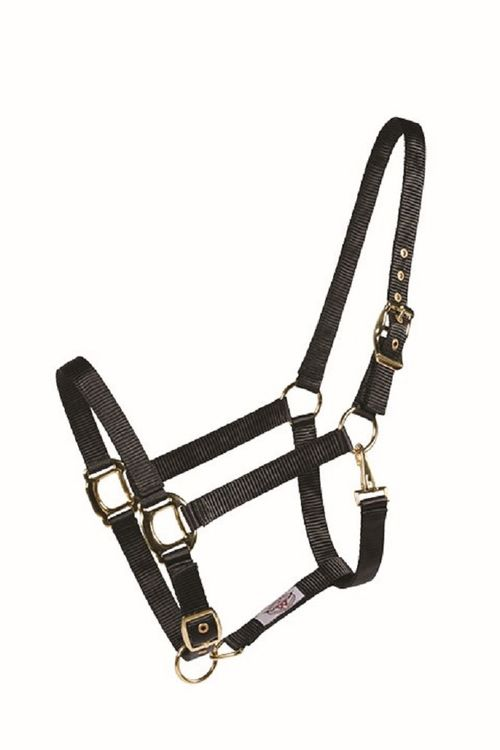 Western Rawhide Country Legend Soft-Touch Halter - Black