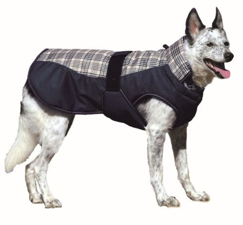 Western Rawhide Century Tiger Deluxe Plaid Dog Coat - Navy Plaid