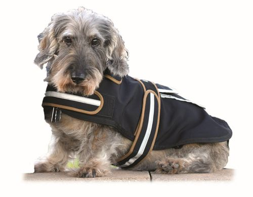 Western Rawhide Century Tiger Softshell Dog Coat - Black