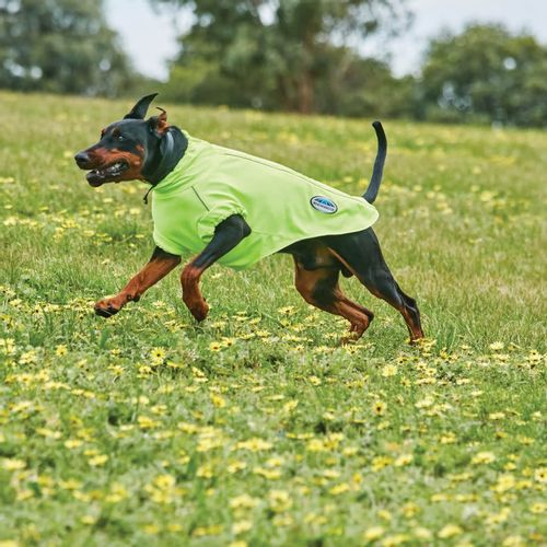 Weatherbeeta Comfitec Active Dog Coat - Yellow