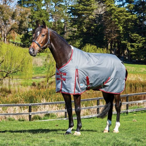 Weatherbeeta Comfitec Plus Dynamic Standard Neck Medium Blanket - Grey/Burgundy
