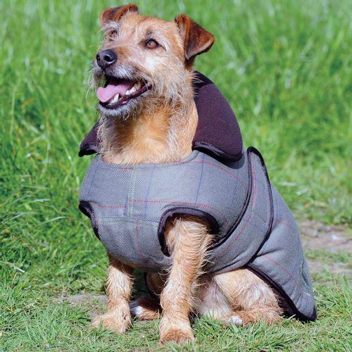 OPEN BOX: Tweed Dog Coat - 18 - Olive