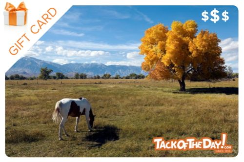 Tack of the Day Gift Certificate