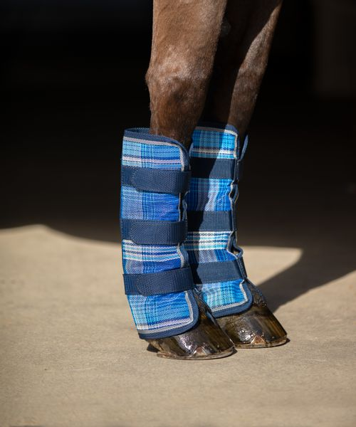 OPEN BOX: Kensington Fly Boots with Webbing - Large - Kentucky Blue