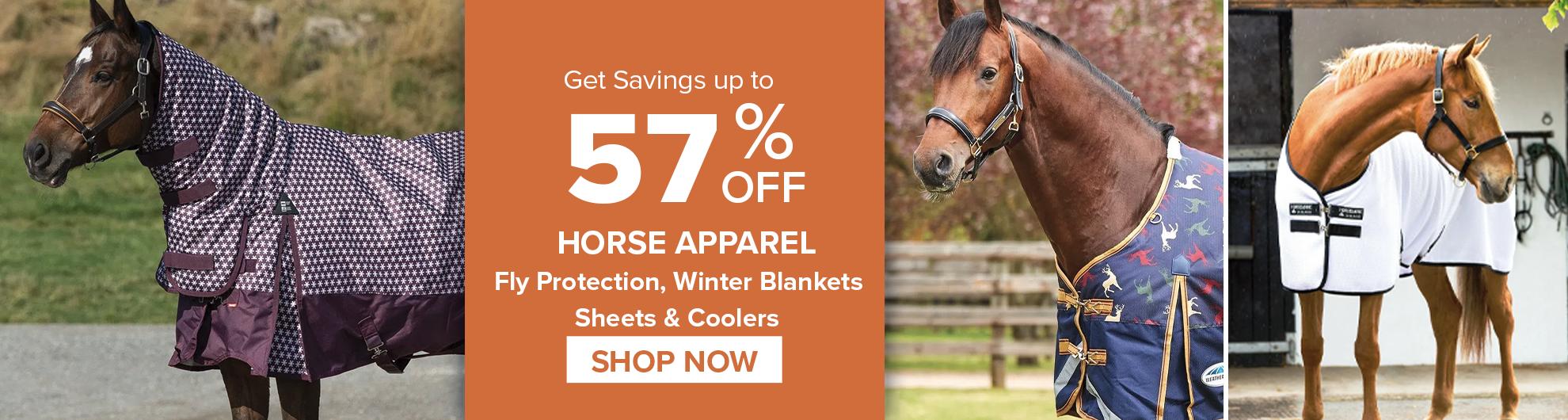 Horse apparel on Sale