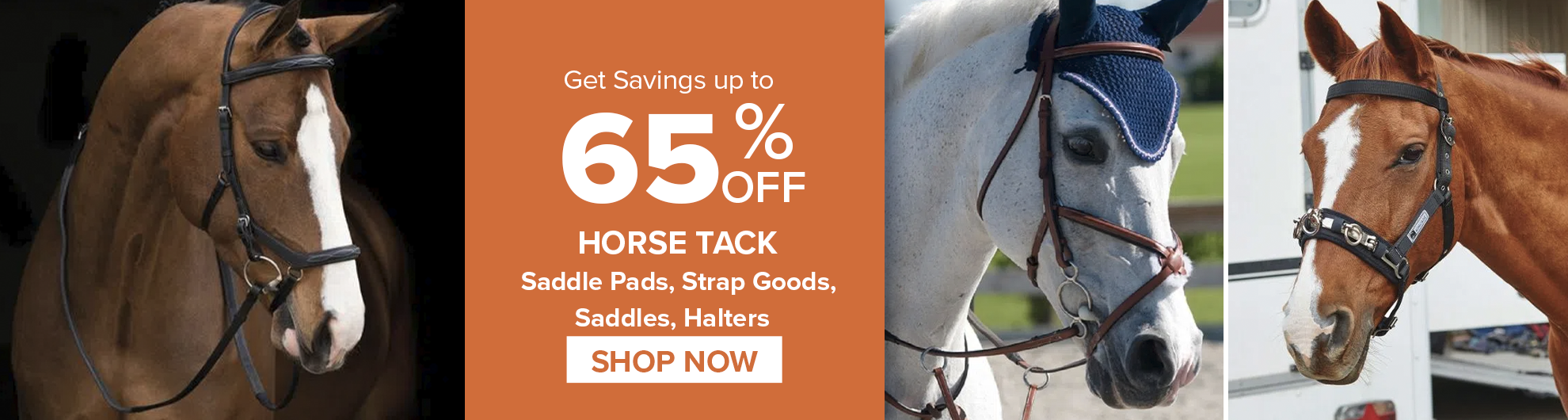 Horse Tack on Sale